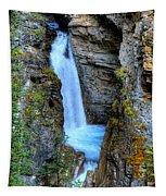 Johnston Canyon Falls Hike Upper Falls Tapestry