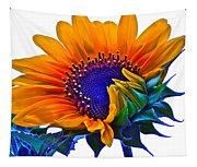 Joyful Tapestry