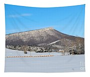Jump Mountain Tapestry