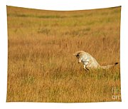 Jumping Coyote Tapestry