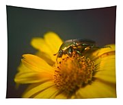 June Beetle Exploring Tapestry