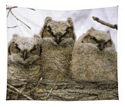 Just Babies Tapestry
