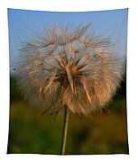 Just Dandy Tapestry