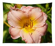 Just Peachy Tapestry