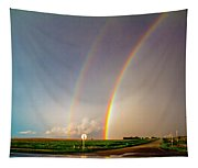 Kansas Storm Chase Bust Day 007 Tapestry