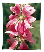 Kashmir Tree Mallow  Tapestry