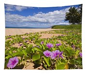 Keawakapu Beach Tapestry