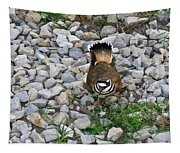 Kildeer And Eggs Tapestry