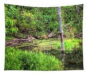 Kill Creek 8388 Tapestry