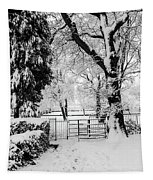 Kissing Gate In The Snow Tapestry