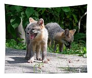 Kit Fox12 Tapestry