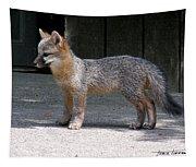 Kit Fox14 Tapestry