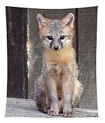 Kit Fox15 Tapestry