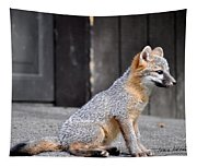 Kit Fox2 Tapestry