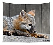 Kit Fox3 Tapestry