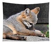 Kit Fox8 Tapestry