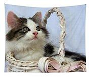 Kitten In Basket Tapestry