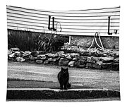 Kitty Across The Street Black And White Tapestry