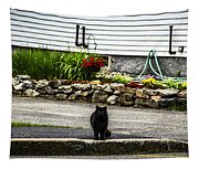 Kitty Across The Street  Tapestry