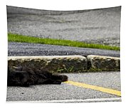 Kitty In The Street Tapestry