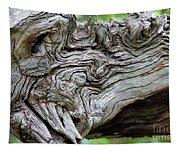 Knotty Tree Tapestry