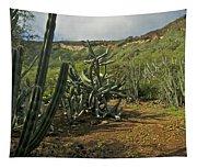 Koko Caldera Tapestry