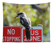 Kookaburra On A Road Sign Tapestry