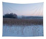 Kulovesi 3 Tapestry