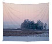 Kulovesi 4 Tapestry