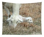 L Is For Lamb Tapestry