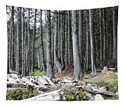La Push Beach Trees Tapestry