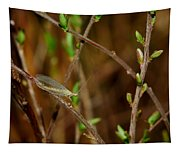Lacewing Tapestry