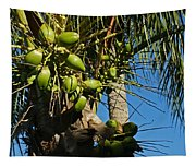 Laden Palm Tree Tapestry