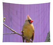 Rare Yellow Cardinal On A Cherry Branch Tapestry