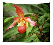 Lady Slipper Tapestry