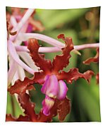 Laelia Undulata Orchid Tapestry