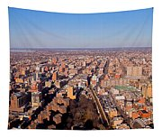 Laguardia Approach Tapestry