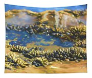Laguna Beach Tide Pool Pattern 3 Tapestry