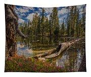 Lake Eleanor Tapestry
