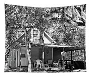 Lake House Black And White Tapestry