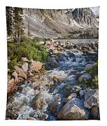 Lake Marie Of The Snowy Range Tapestry