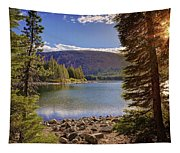 Lake Mary Forest Star Tapestry