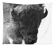Lamar Valley Bison Black And White Tapestry