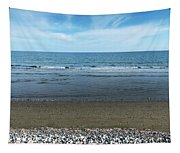 Land Sea And Ocean Background Tapestry