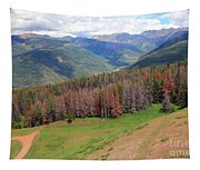 Landscape In Vail Tapestry