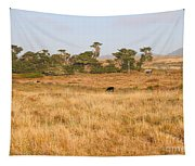 Landscape With Cows Grazing In The Field . 7d9957 Tapestry