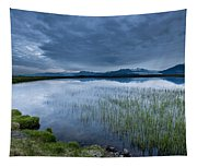 Landscape With Water Grass Tapestry