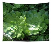 Large Green Succulent Plants Tapestry