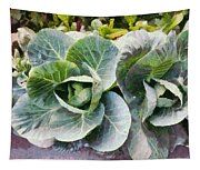 Large Leaves Of A Cabbage Plant Tapestry