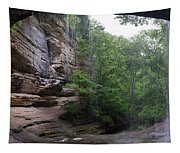 Lasalle Canyon Starved Rock State Park Tapestry